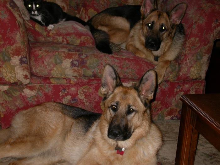 Stoney, Inga & Sasha